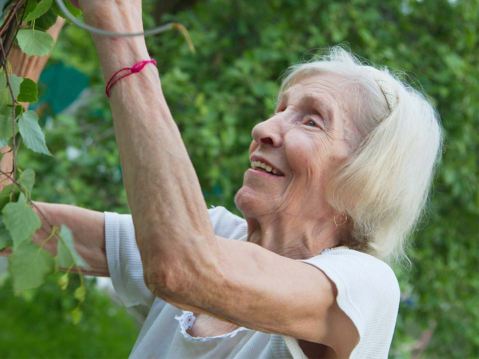 old lady gardening